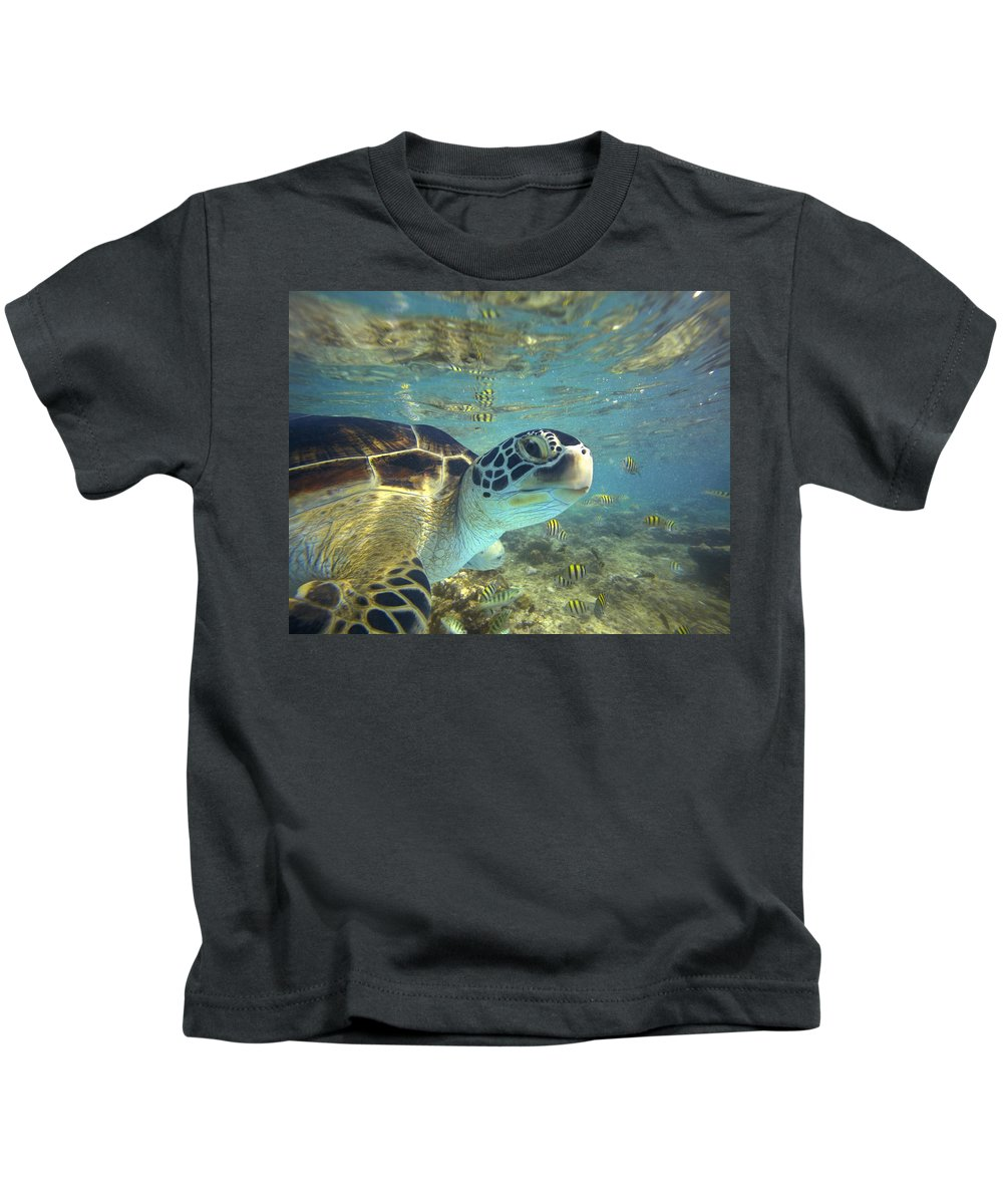 00451417 Kids T-Shirt featuring the photograph Green Sea Turtle Balicasag Island by Tim Fitzharris