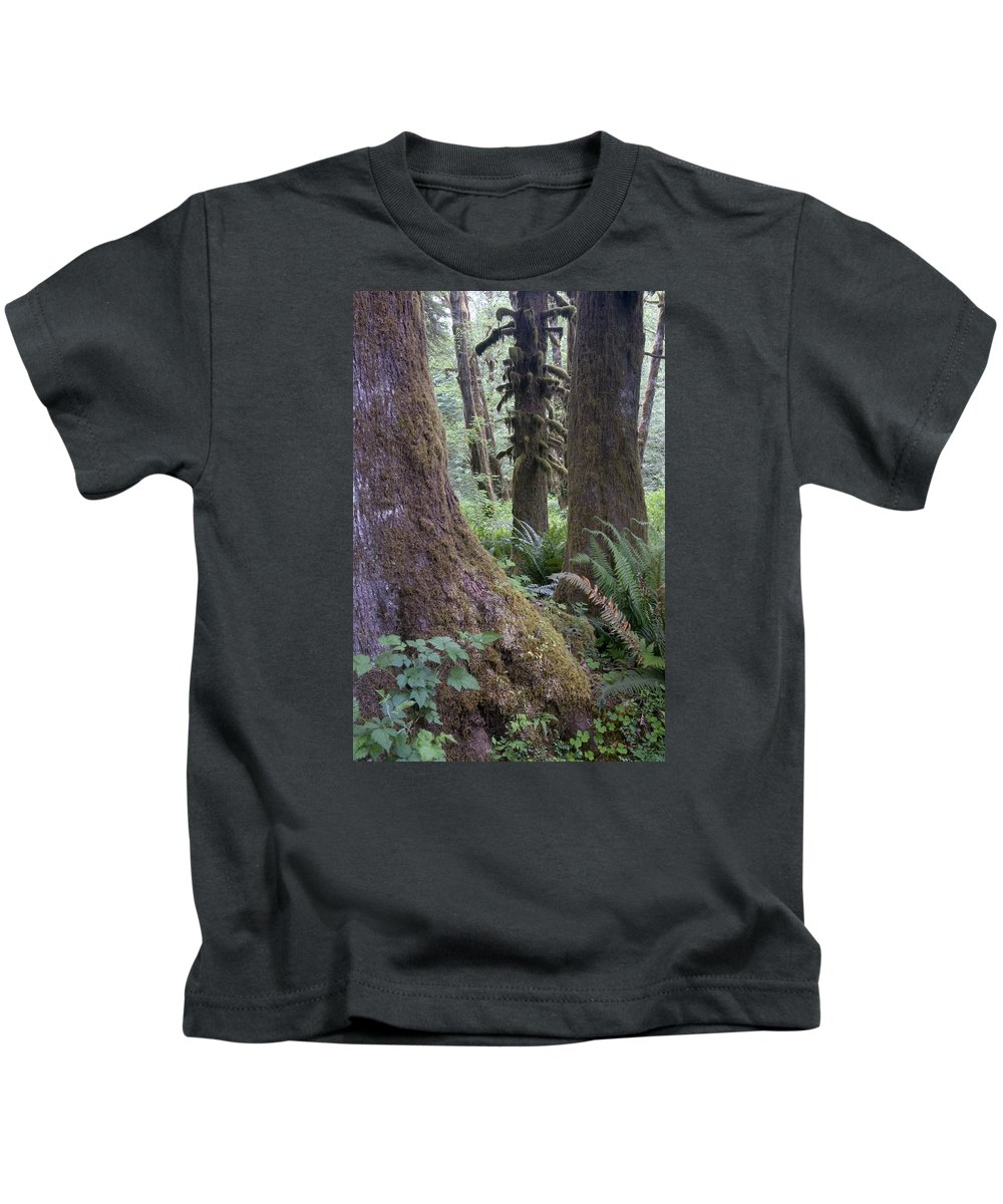 Hoh Kids T-Shirt featuring the photograph Quinault Rain Forest 3152 by Bob Neiman