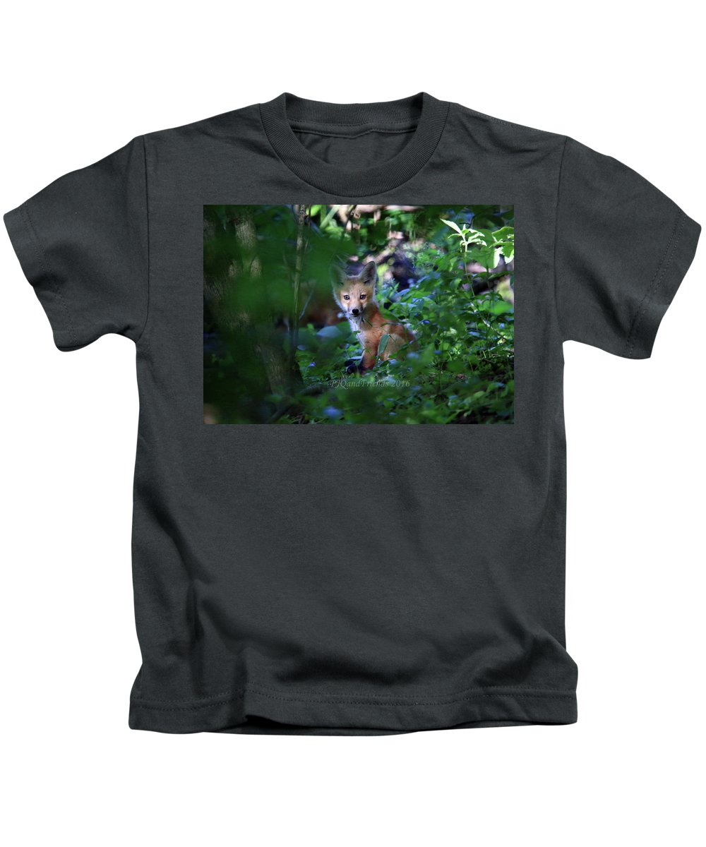 Red Fox Kit Kids T-Shirt featuring the photograph Red Fox Kit by PJQandFriends Photography