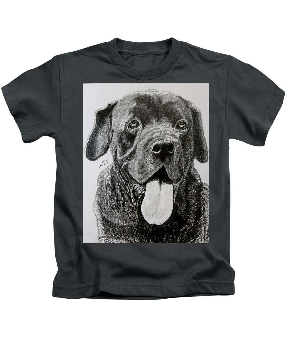 Dog Portrait Kids T-Shirt featuring the drawing Sampson by Stan Hamilton