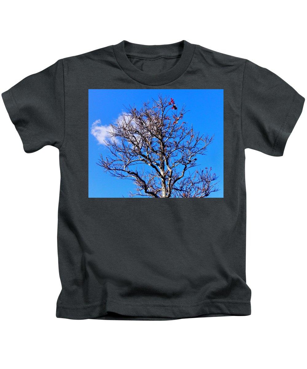 Nikwatt Kids T-Shirt featuring the photograph Silver And Blue by Nik Watt