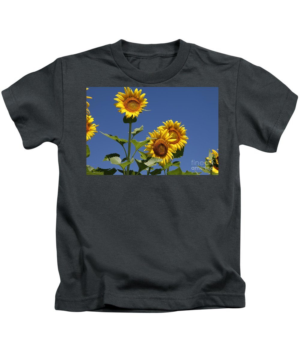 Sunflowers Kids T-Shirt featuring the photograph Sunflowers by Amanda Barcon