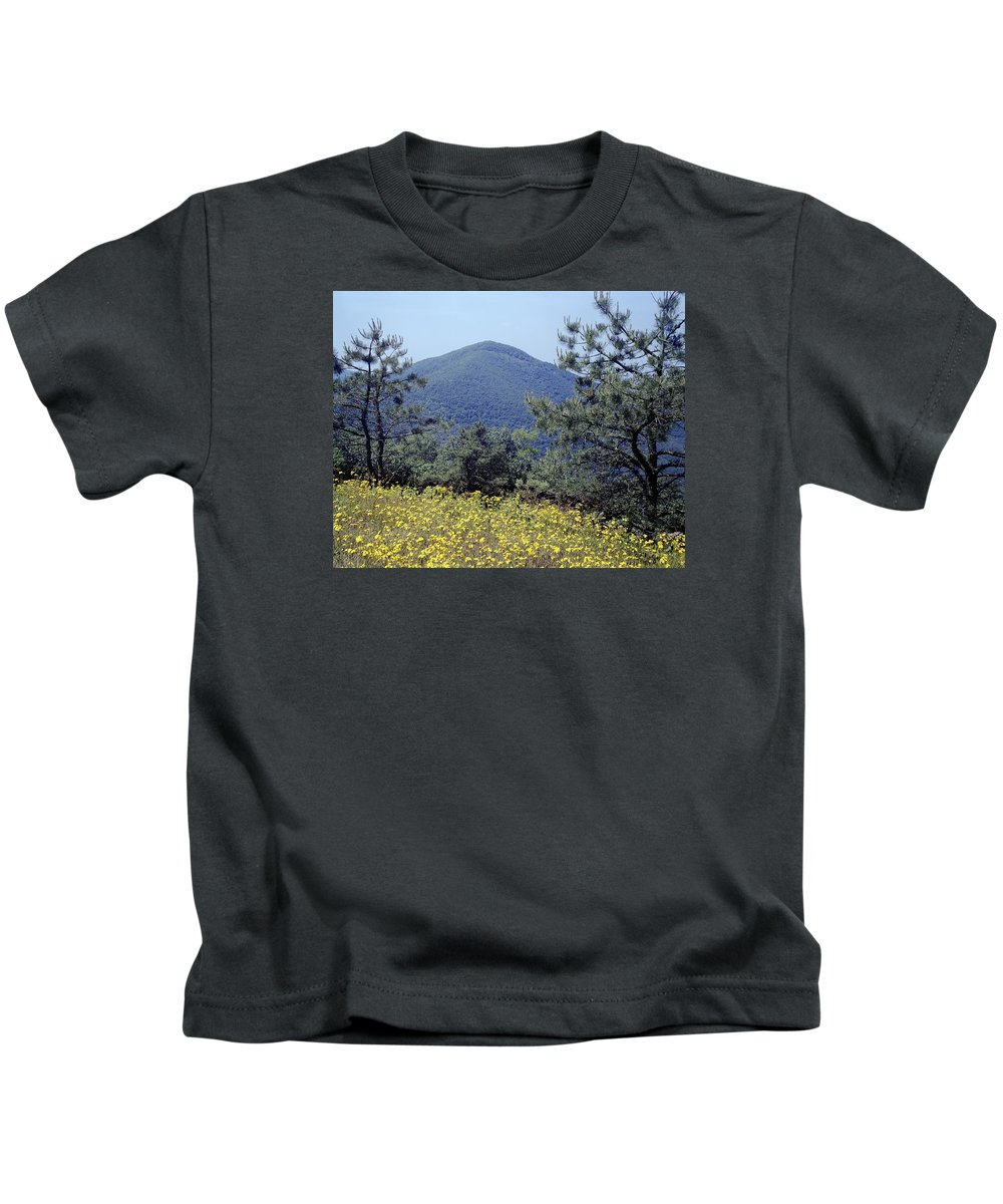 Turk Mountain Kids T-Shirt featuring the photograph 143419-turk Mountain Overlook by Ed Cooper Photography