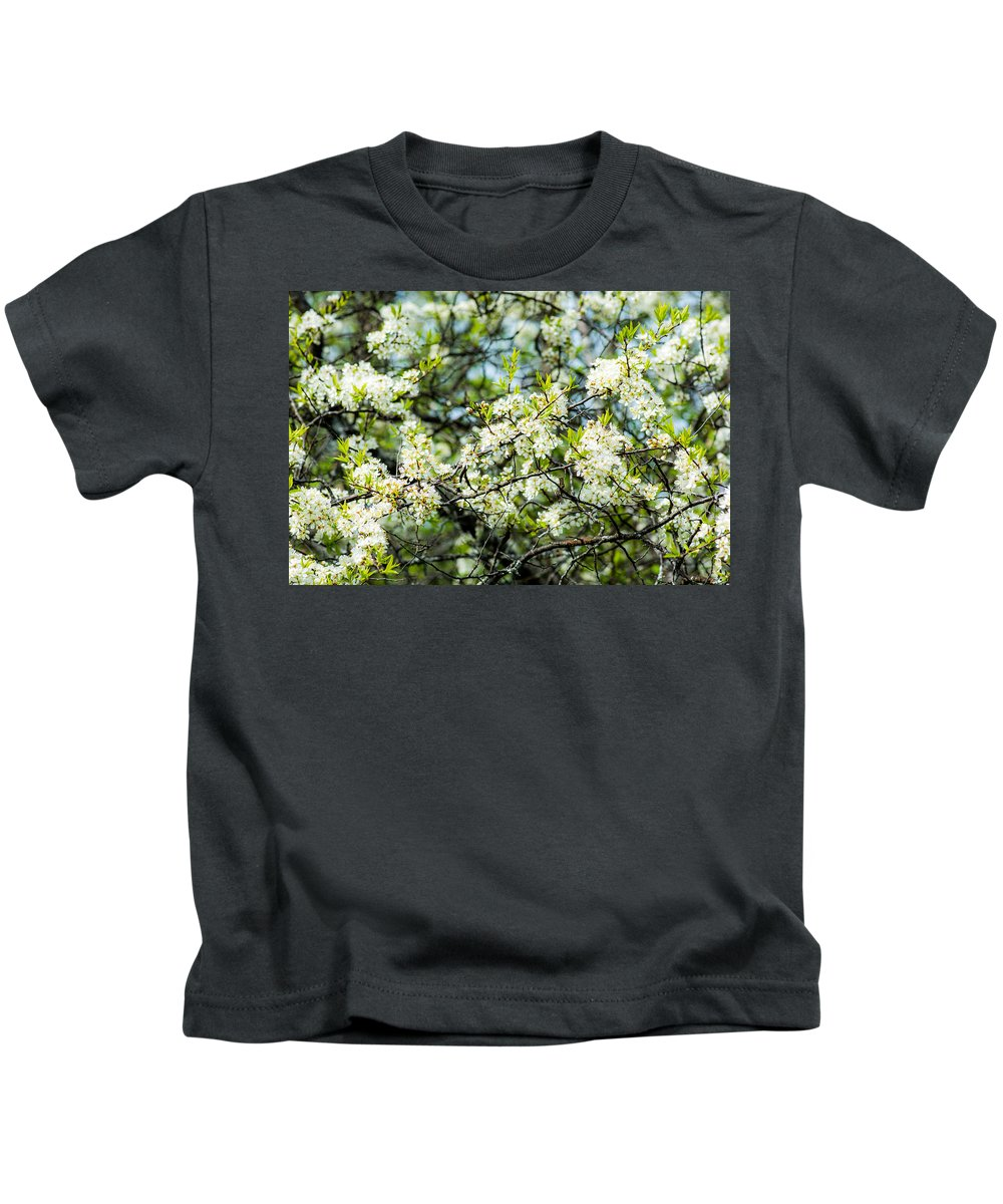 Apple Tree Kids T-Shirt featuring the photograph Vermont Apple Blossoms by Sherman Perry