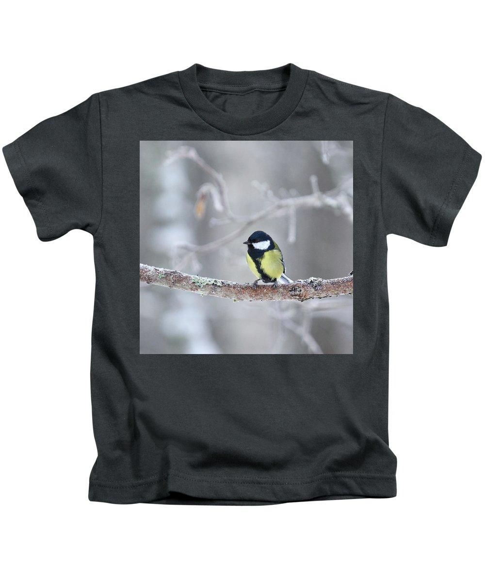 Lehtokukka Kids T-Shirt featuring the photograph Great Tit by Jouko Lehto