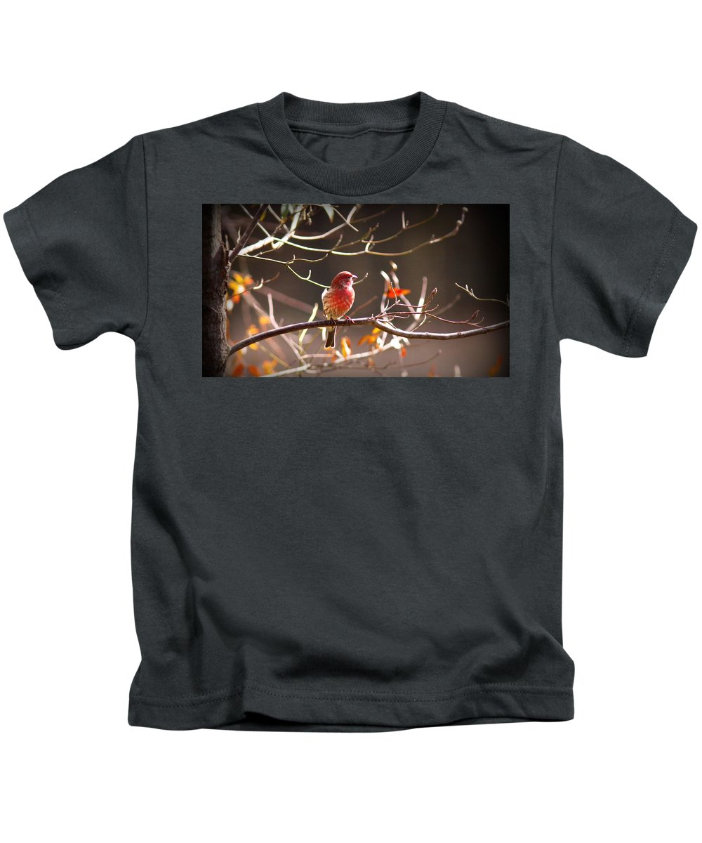 House Finch Kids T-Shirt featuring the photograph Img_0001 - House Finch by Travis Truelove