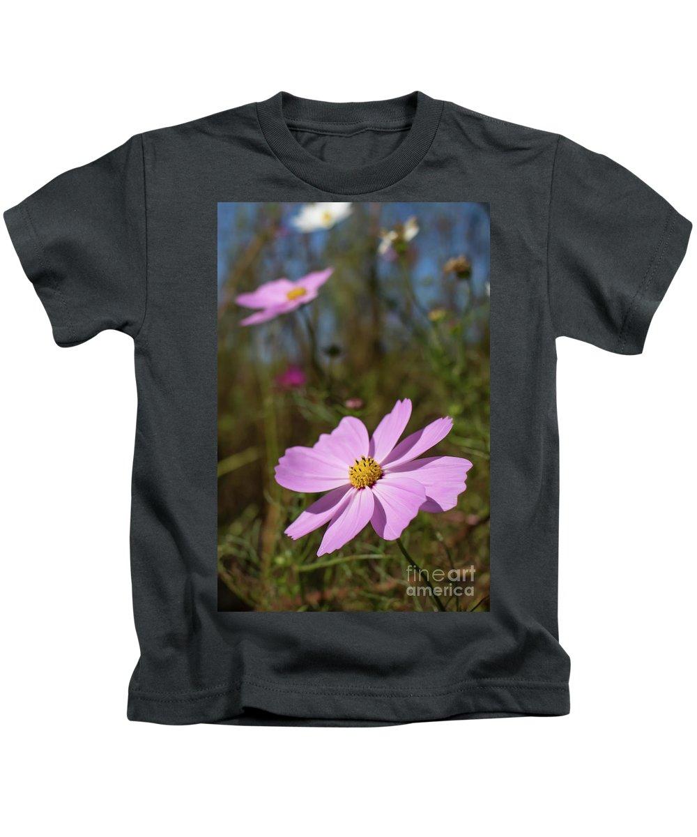 Asia Kids T-Shirt featuring the photograph Sensation Cosmos Bipinnatus Fully Bloomed Pink Cosmos At Garde by Eiko Tsuchiya