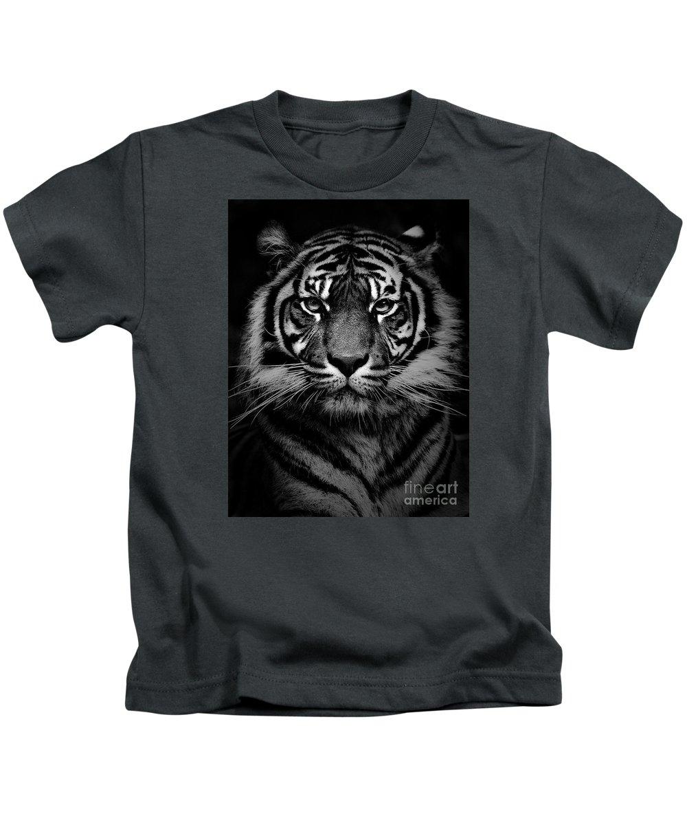 Sumatran Tiger Kids T-Shirt featuring the photograph Sumatran tiger by Sheila Smart Fine Art Photography