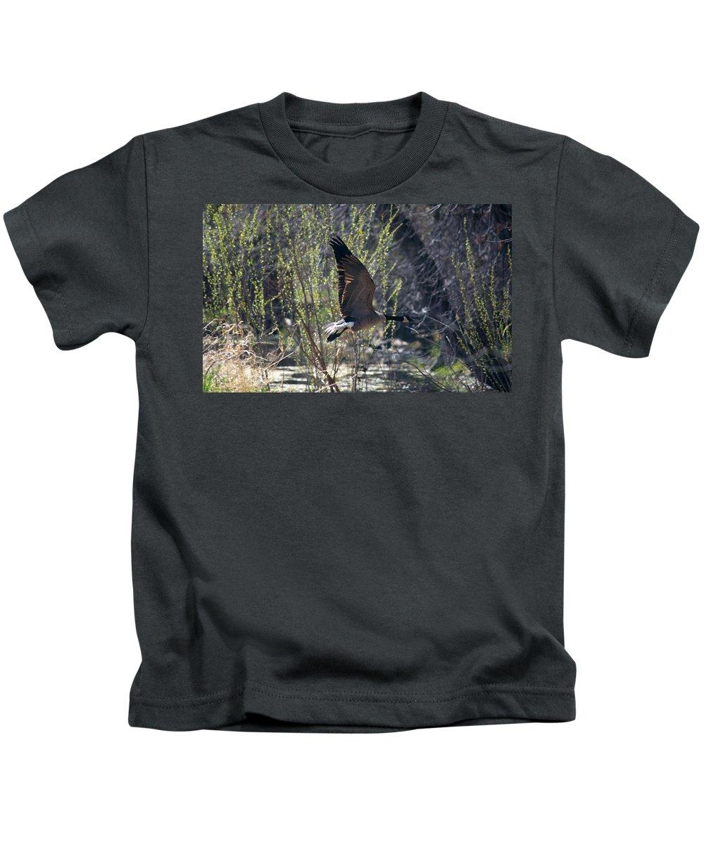 Wetland Kids T-Shirt featuring the photograph Take Off by Linda Kerkau