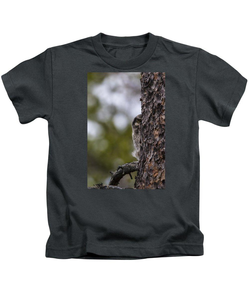 Hawk Kids T-Shirt featuring the photograph Hawk Owl by Borje Olsson