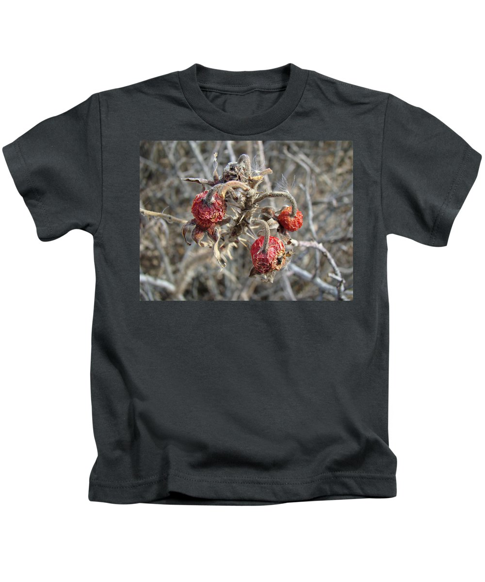 Rose Kids T-Shirt featuring the photograph Beach Rose Hips - Rosa Rugosa by Mother Nature
