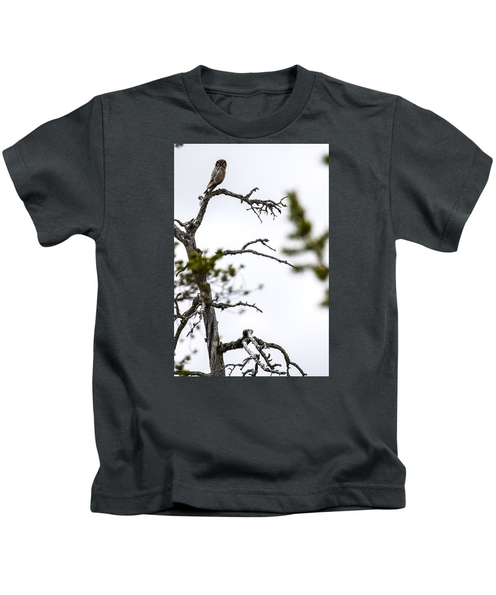 Hawk Kids T-Shirt featuring the photograph Hawk Owl by Borje Olsson