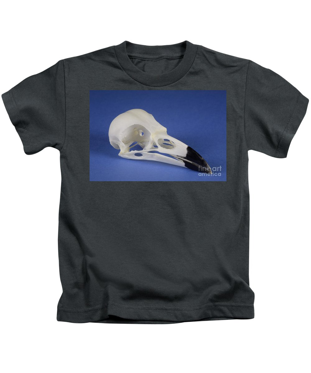 Bird Kids T-Shirt featuring the photograph American Crow Skull by Ted Kinsman