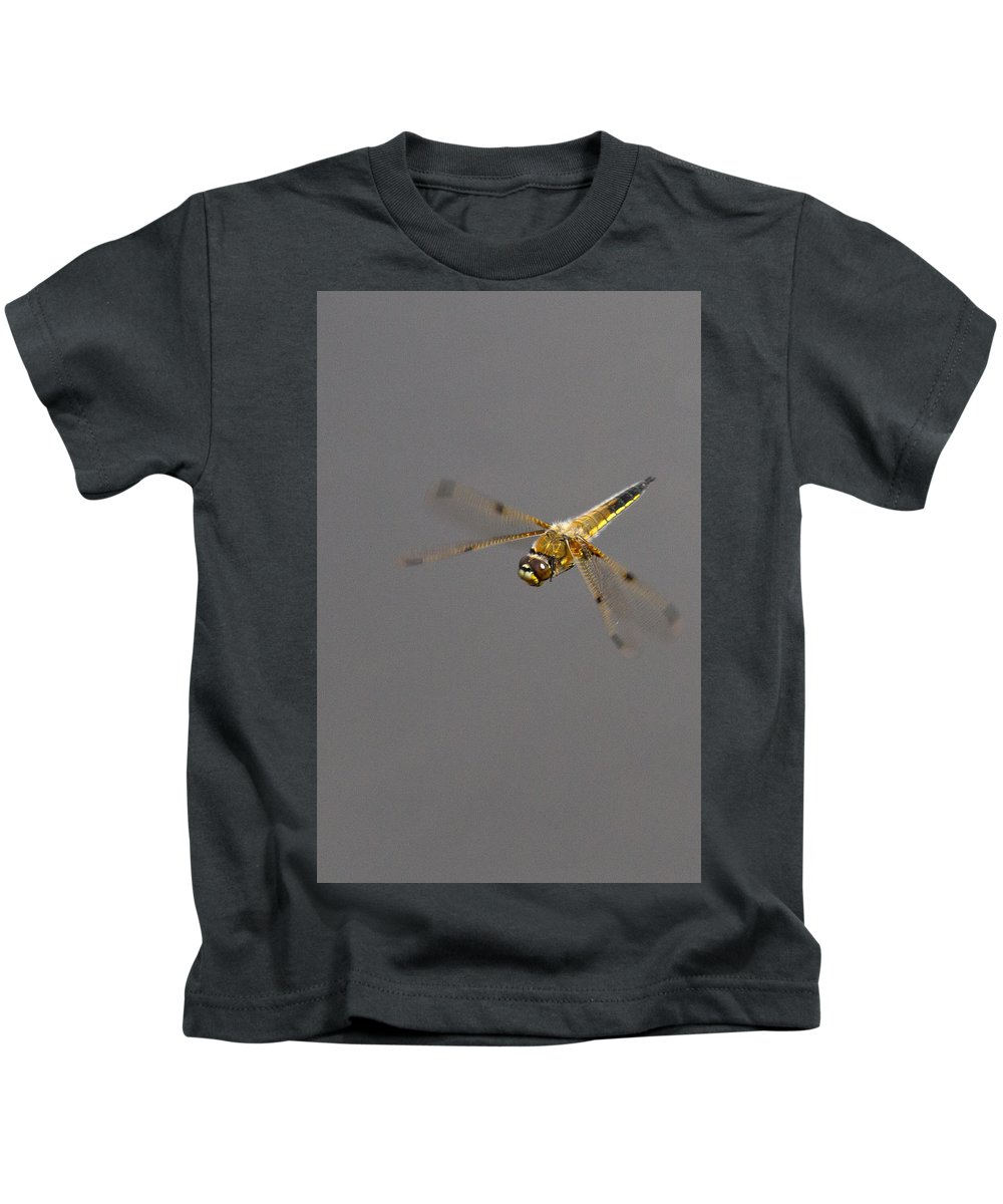 Dragonfly Kids T-Shirt featuring the photograph 4 Spotted Chaser In Flight by Bob Kemp