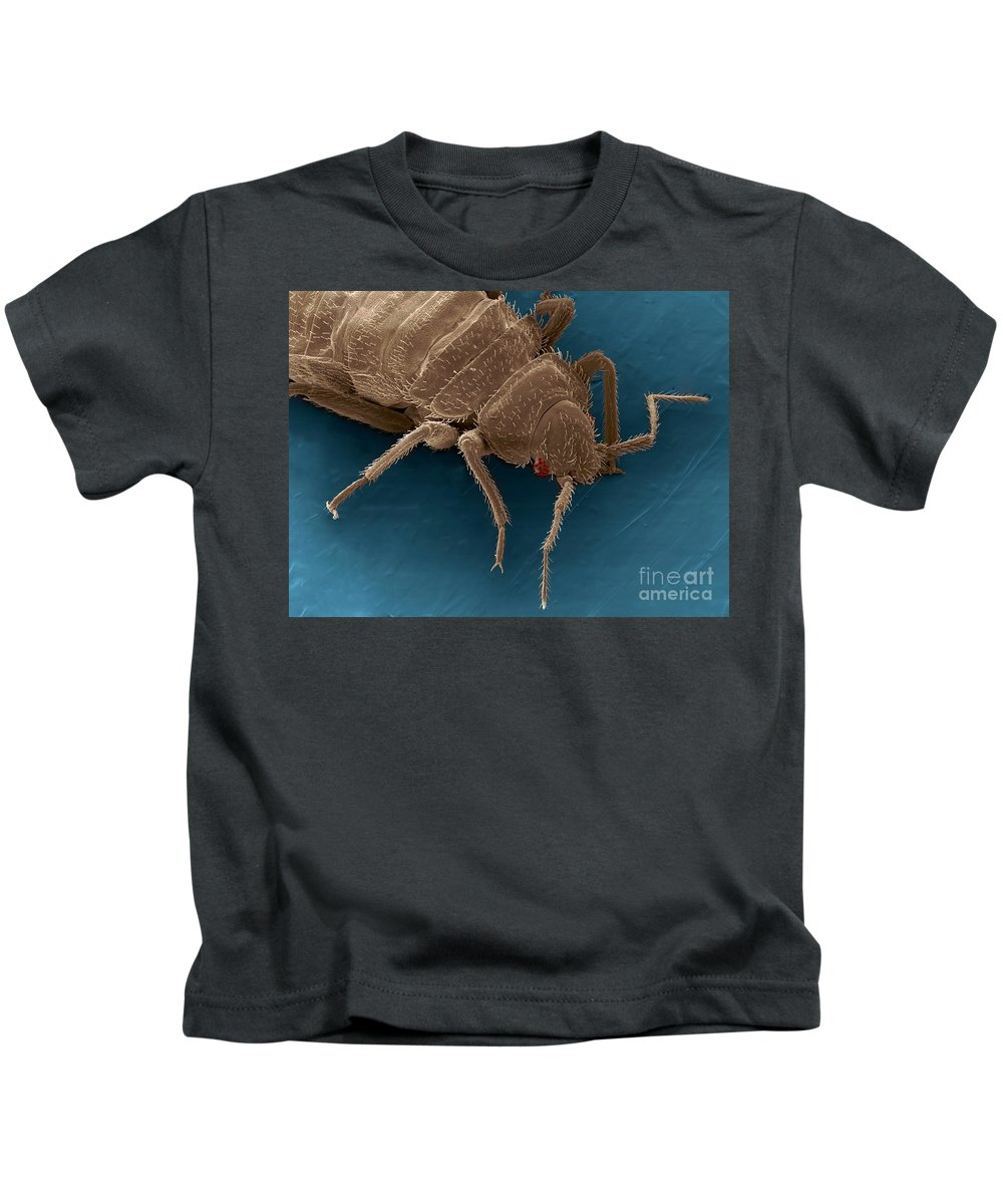 Bed Bugs Kids T-Shirt featuring the photograph Bedbug, Cimex Lectularius, Sem by Ted Kinsman