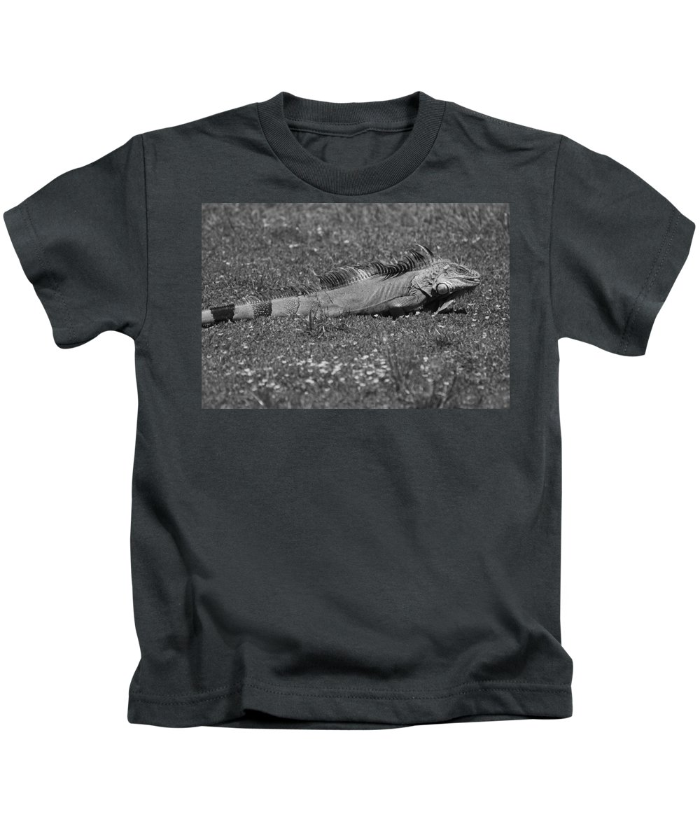 Sun Kids T-Shirt featuring the photograph I Iguana by Rob Hans
