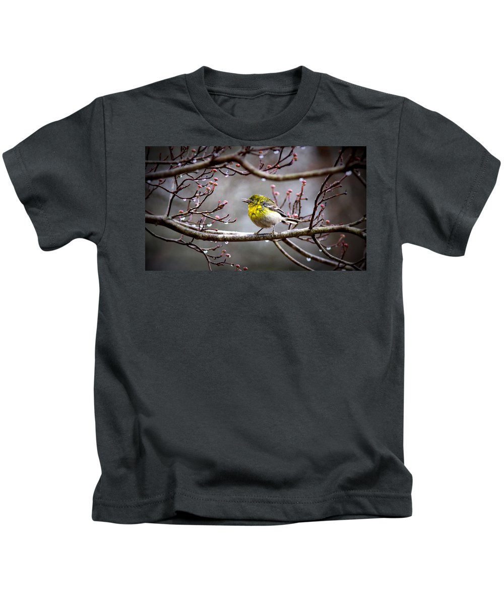 Pine Warbler Kids T-Shirt featuring the photograph Img_0001 - Pine Warbler by Travis Truelove