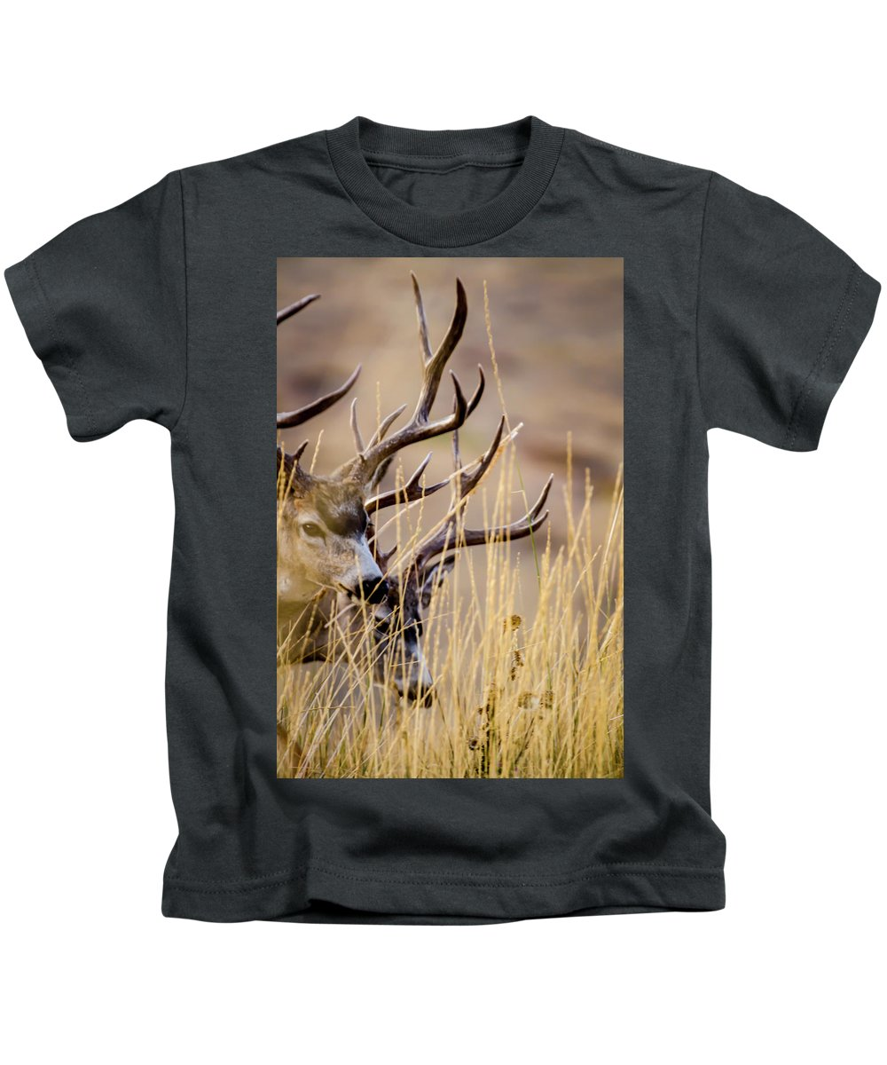 Wildlife Kids T-Shirt featuring the photograph A Couple Of Bucks by Albert Seger