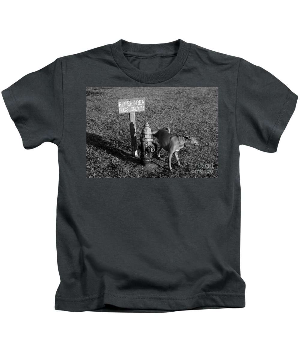 Dog Kids T-Shirt featuring the photograph A Dog's Life by David Lee Thompson