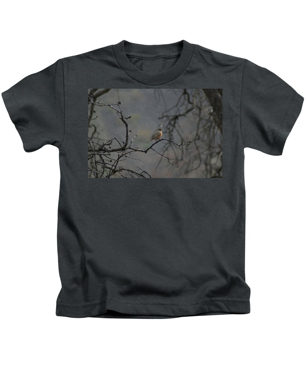 Fowl Kids T-Shirt featuring the photograph A Robin In Spring Snowfall by Jeff Swan