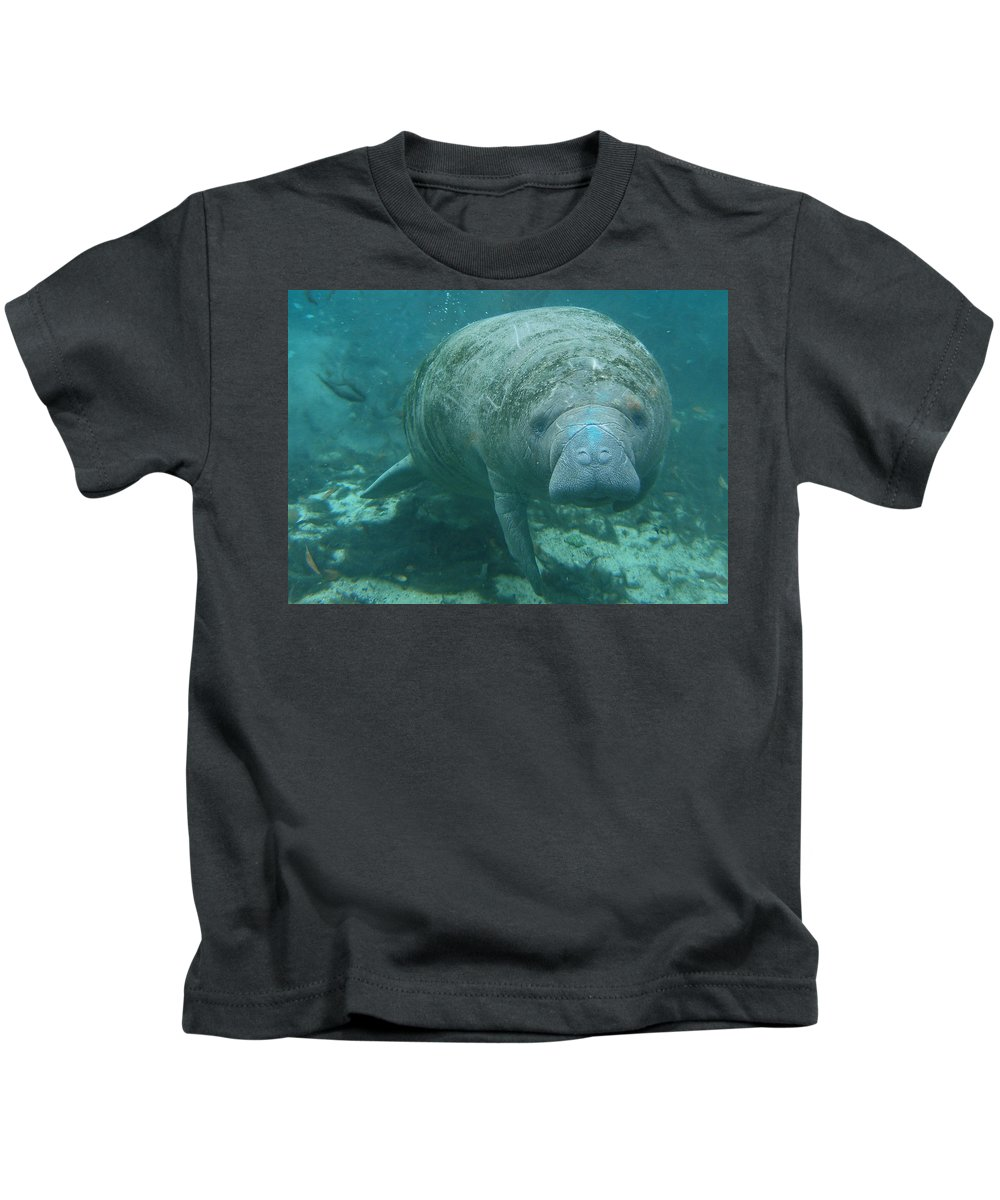 Joy Kids T-Shirt featuring the photograph About To Meet A Manatee by Kimberly Mohlenhoff