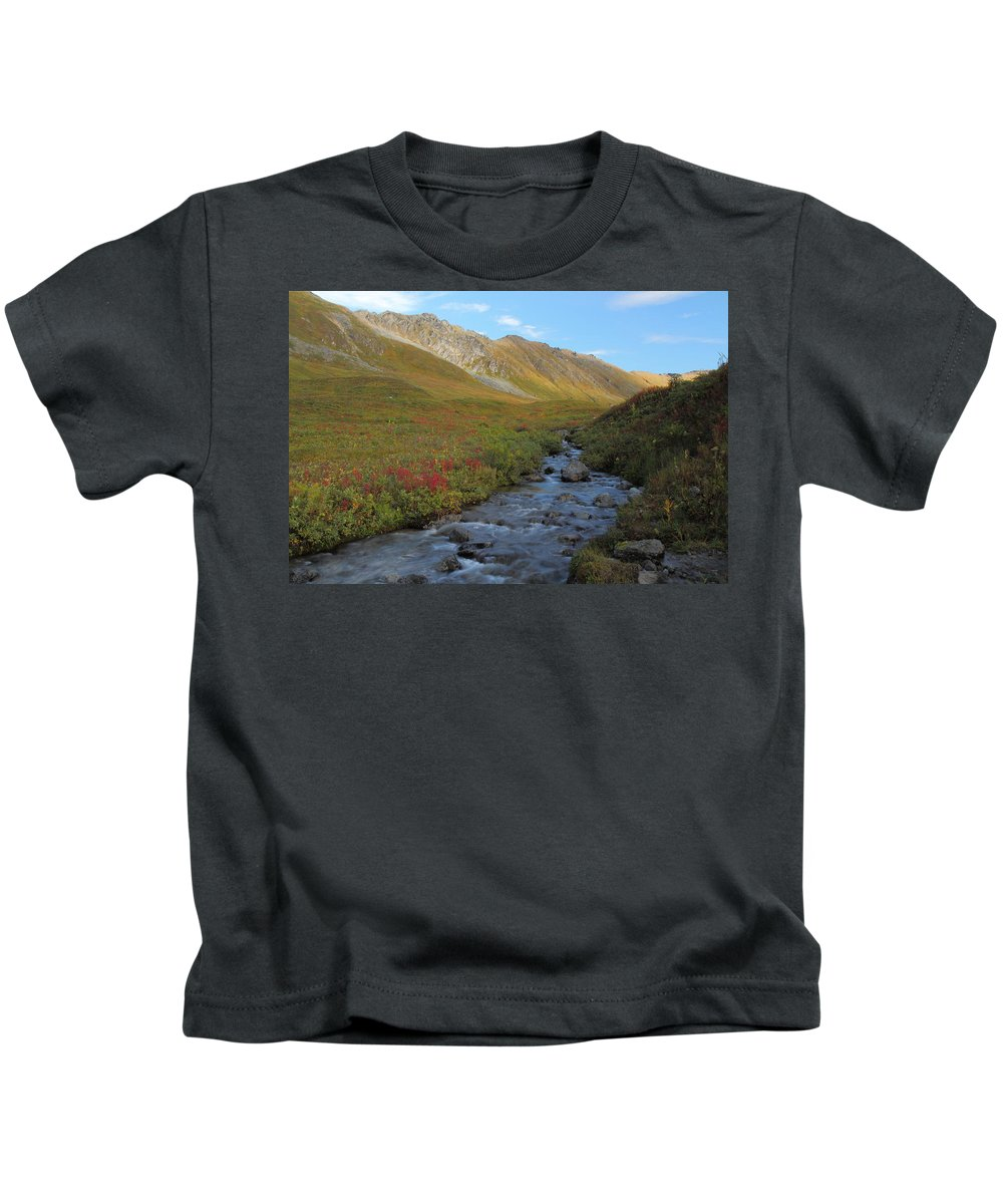 Alaska Kids T-Shirt featuring the photograph Alaska Fireweed And Willow Creek Along Hatcher Pass Road by Steve Wolfe