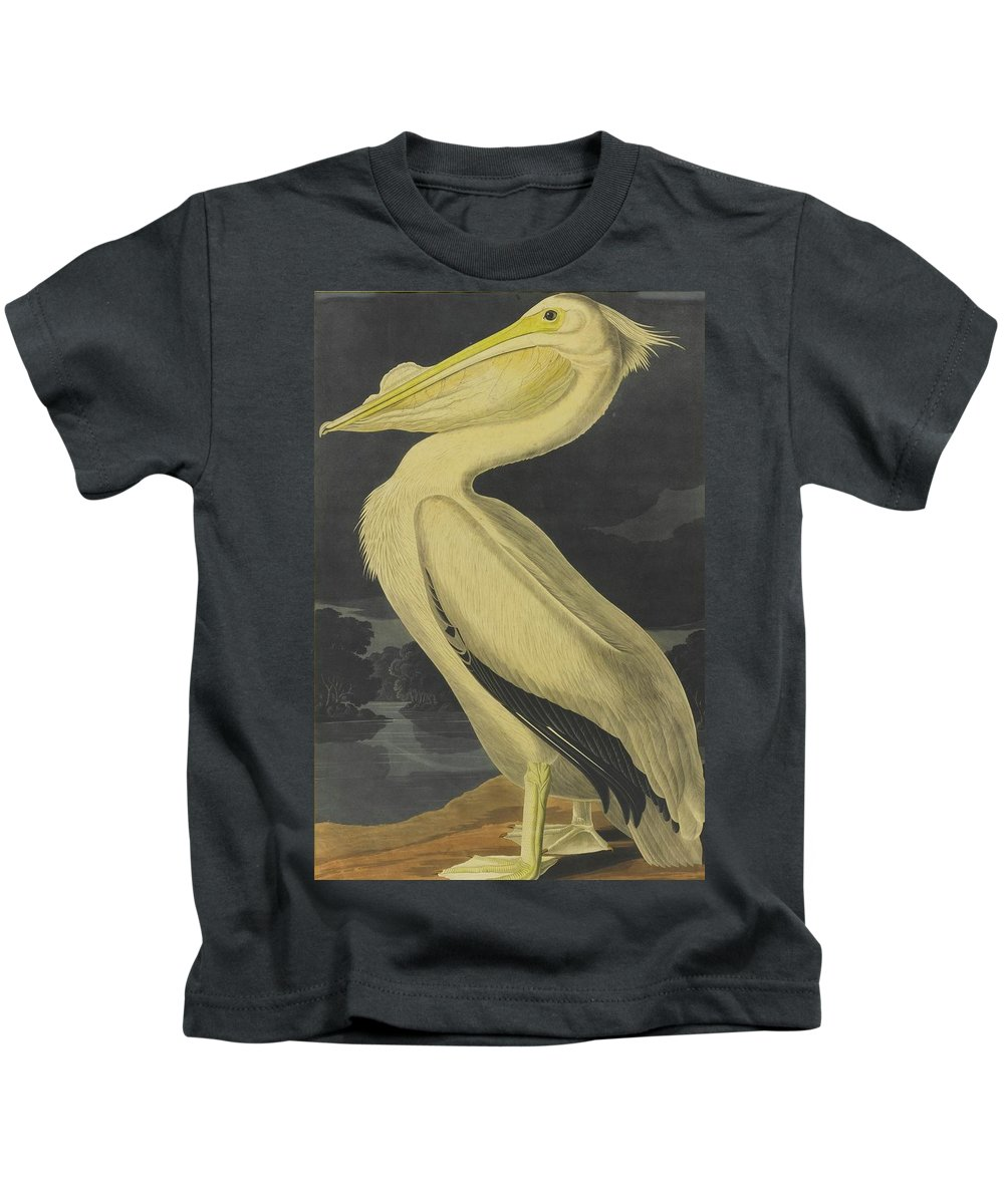 John James Audubon (after) American White Pelican (plate Cccxi) Kids T-Shirt featuring the painting American White Pelican by MotionAge Designs