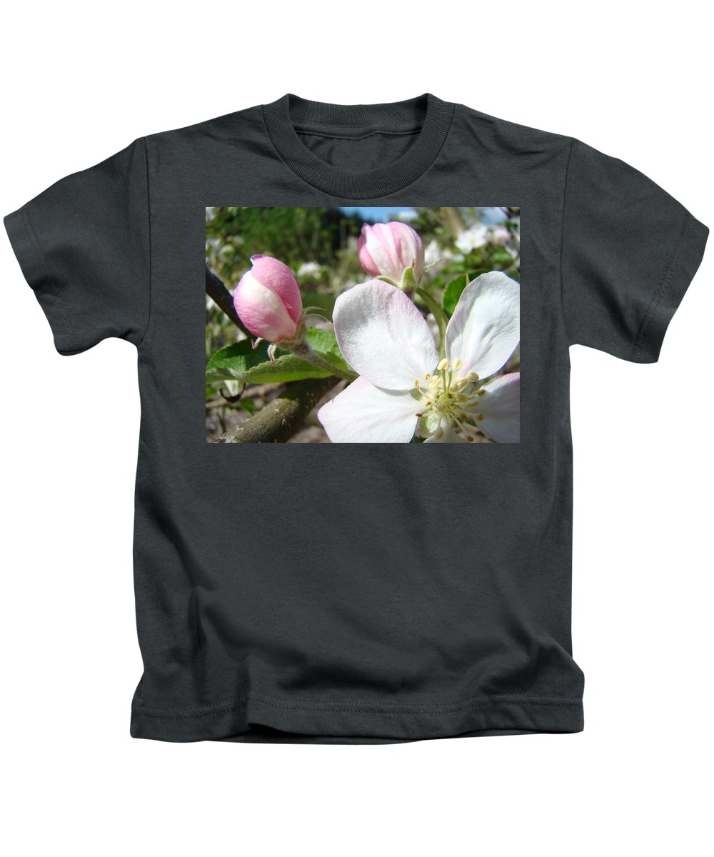 Apple Kids T-Shirt featuring the photograph Apple Blossom Artwork Spring Apple Tree Baslee Troutman by Baslee Troutman
