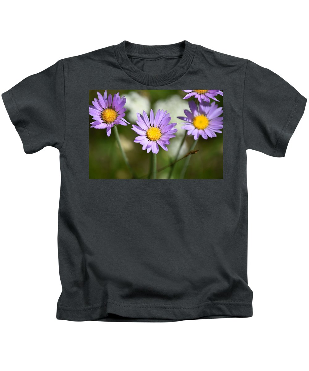 Asters Kids T-Shirt featuring the photograph Asters by Chris Gudger