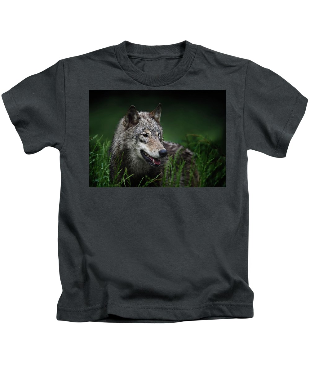 Wolf Kids T-Shirt featuring the photograph Attentive by John Christopher