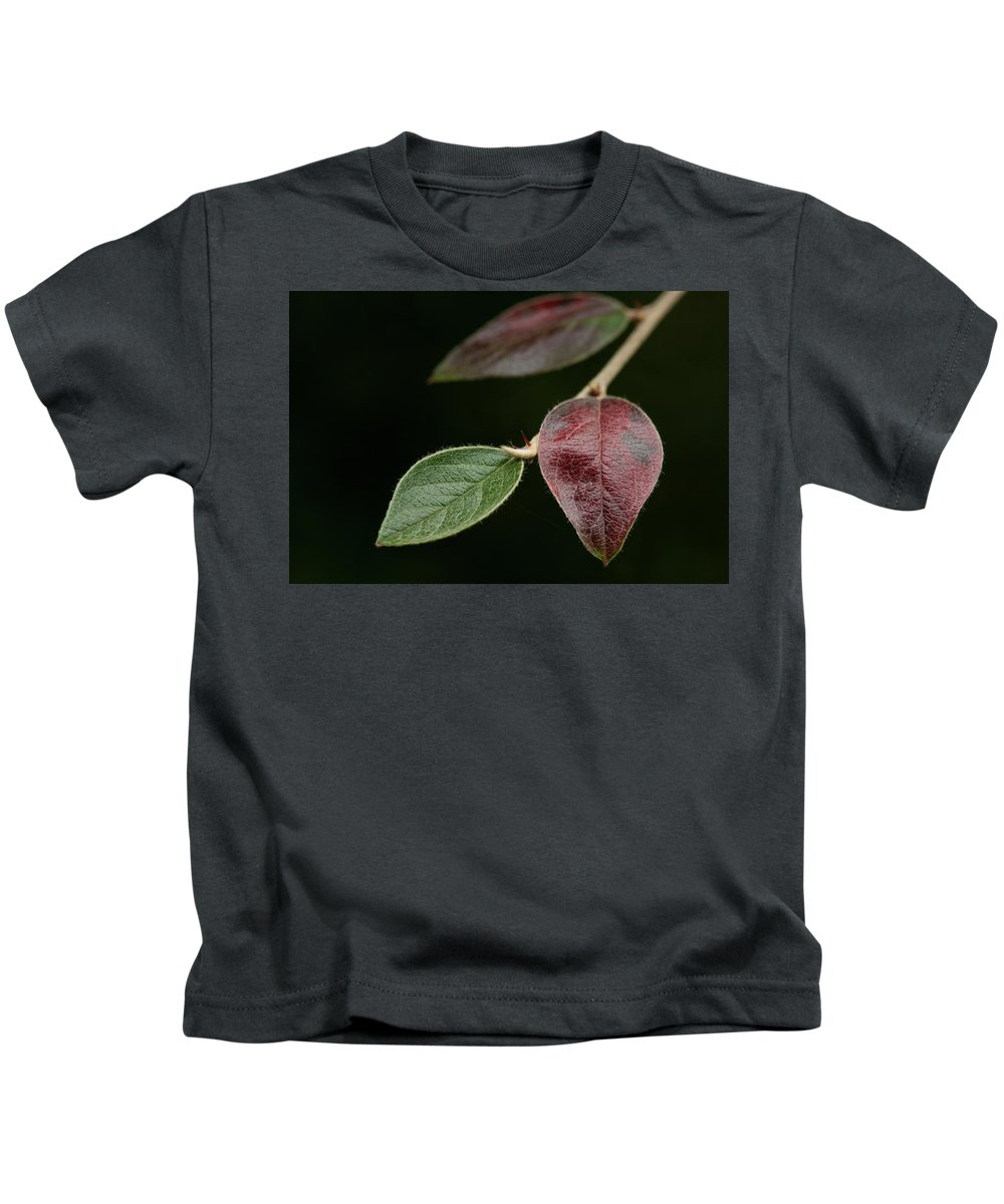 Fine Art Kids T-Shirt featuring the photograph Autumn Change by Photopoint Art