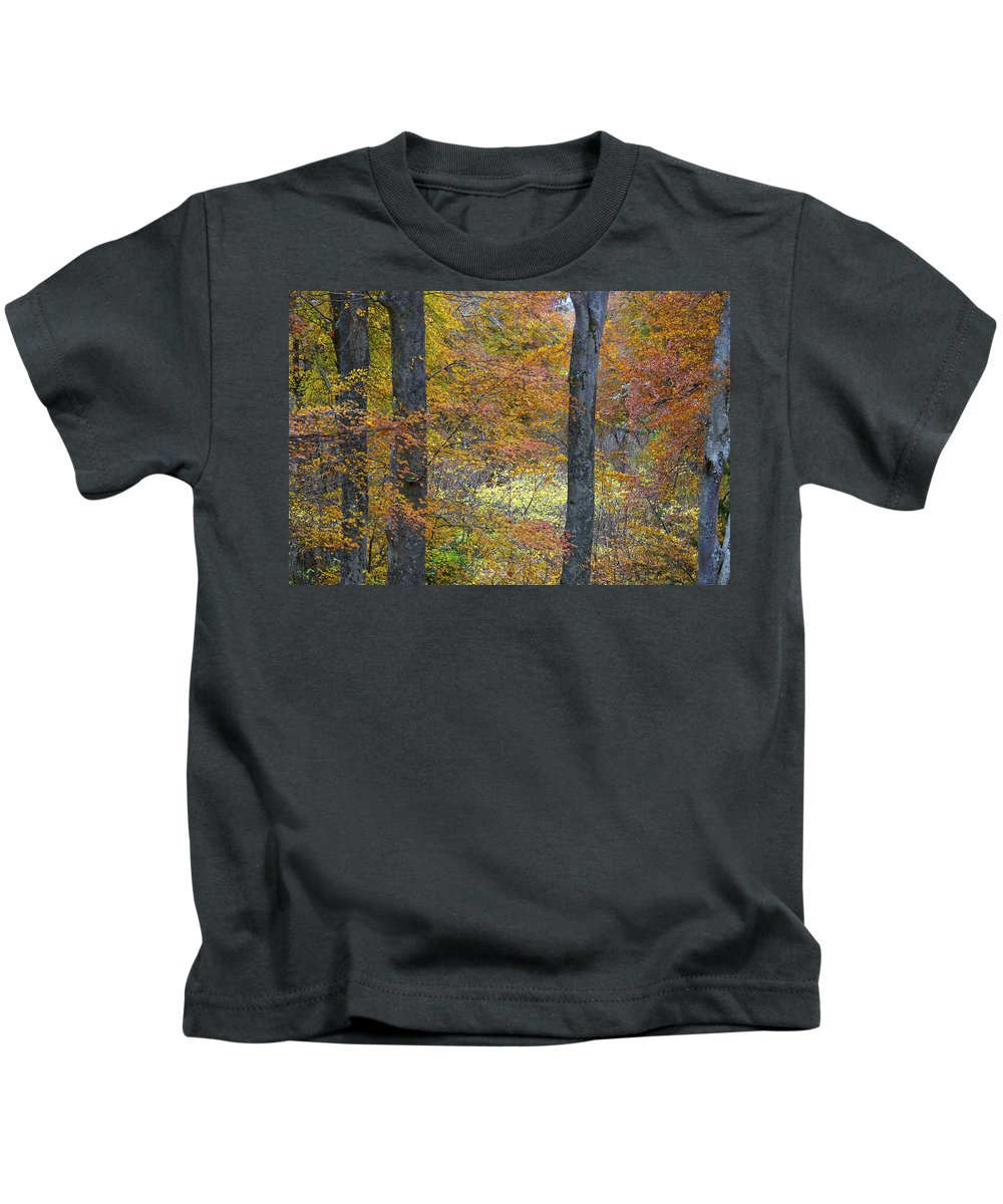 Fall Kids T-Shirt featuring the photograph Autumn Colours by Phil Crean