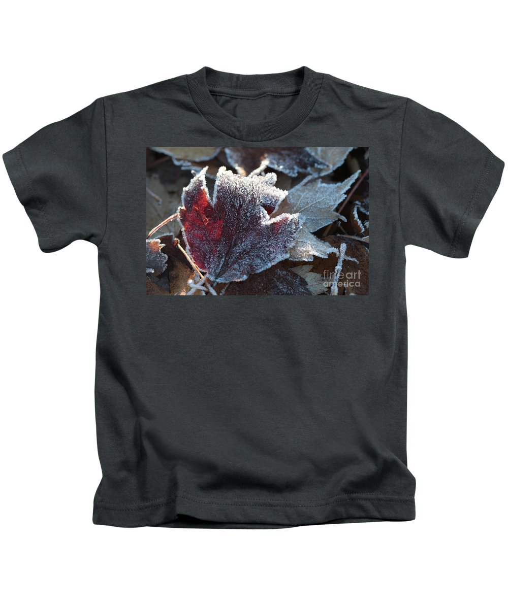 Autumn Kids T-Shirt featuring the photograph Autumn Ends, Winter Begins 2 by Linda Lees