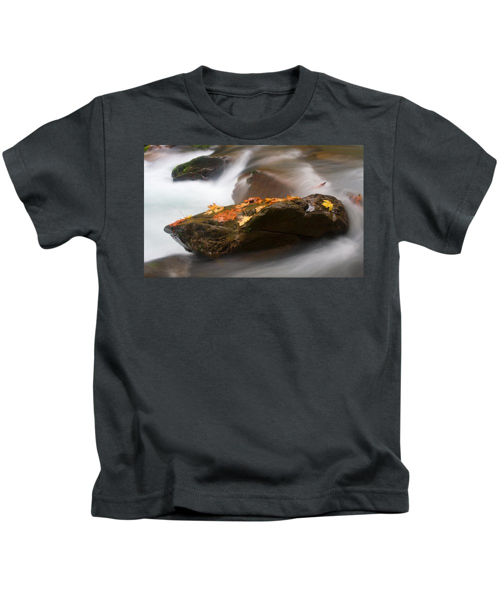 Leaves Kids T-Shirt featuring the photograph Autumn Resting Place by Mike Dawson