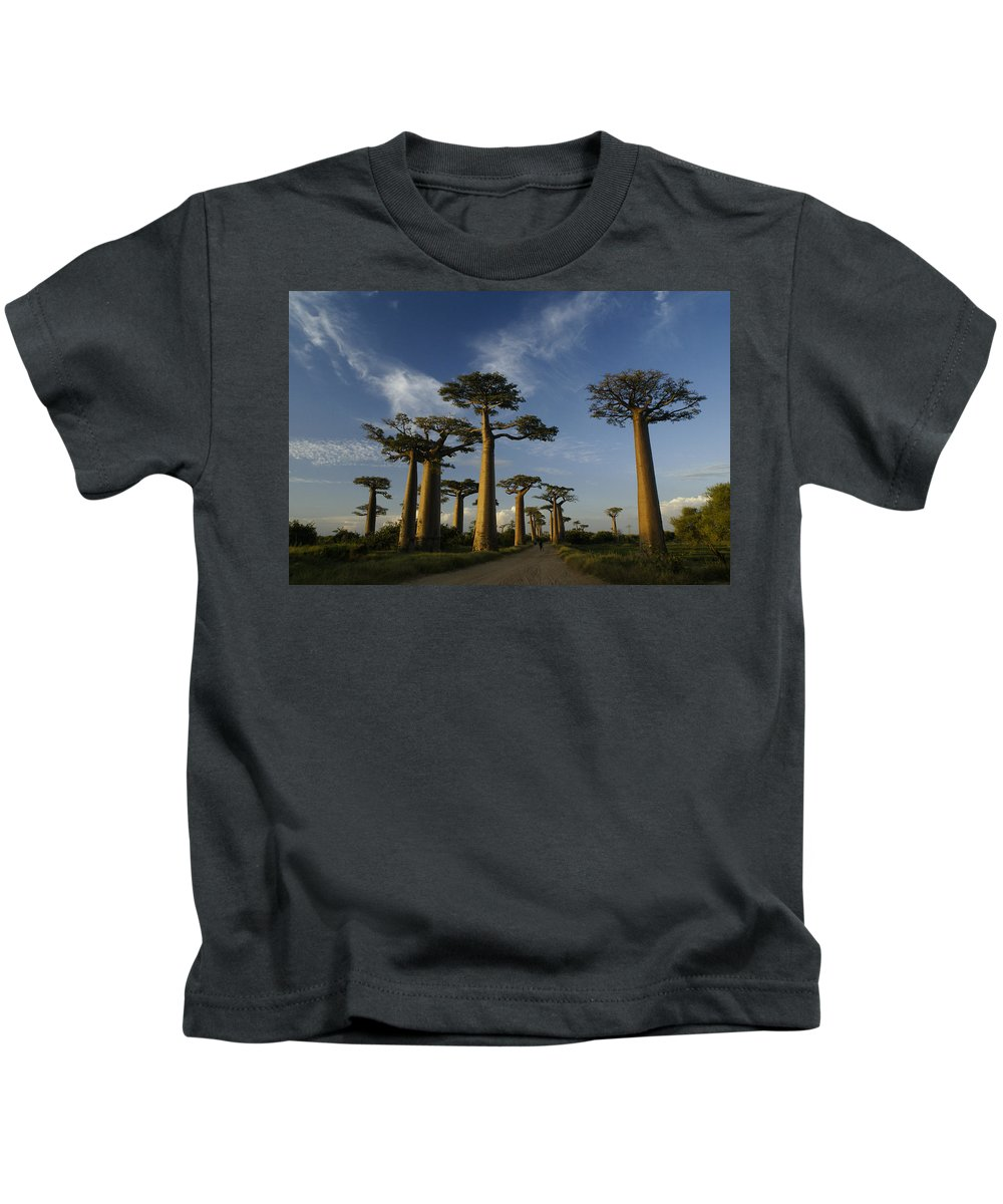 Madagascar Kids T-Shirt featuring the photograph Avenue Des Baobabs by Michele Burgess