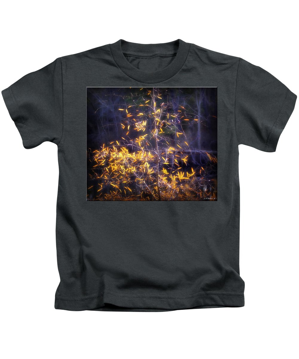2d Kids T-Shirt featuring the photograph Backlit Beauty by Brian Wallace