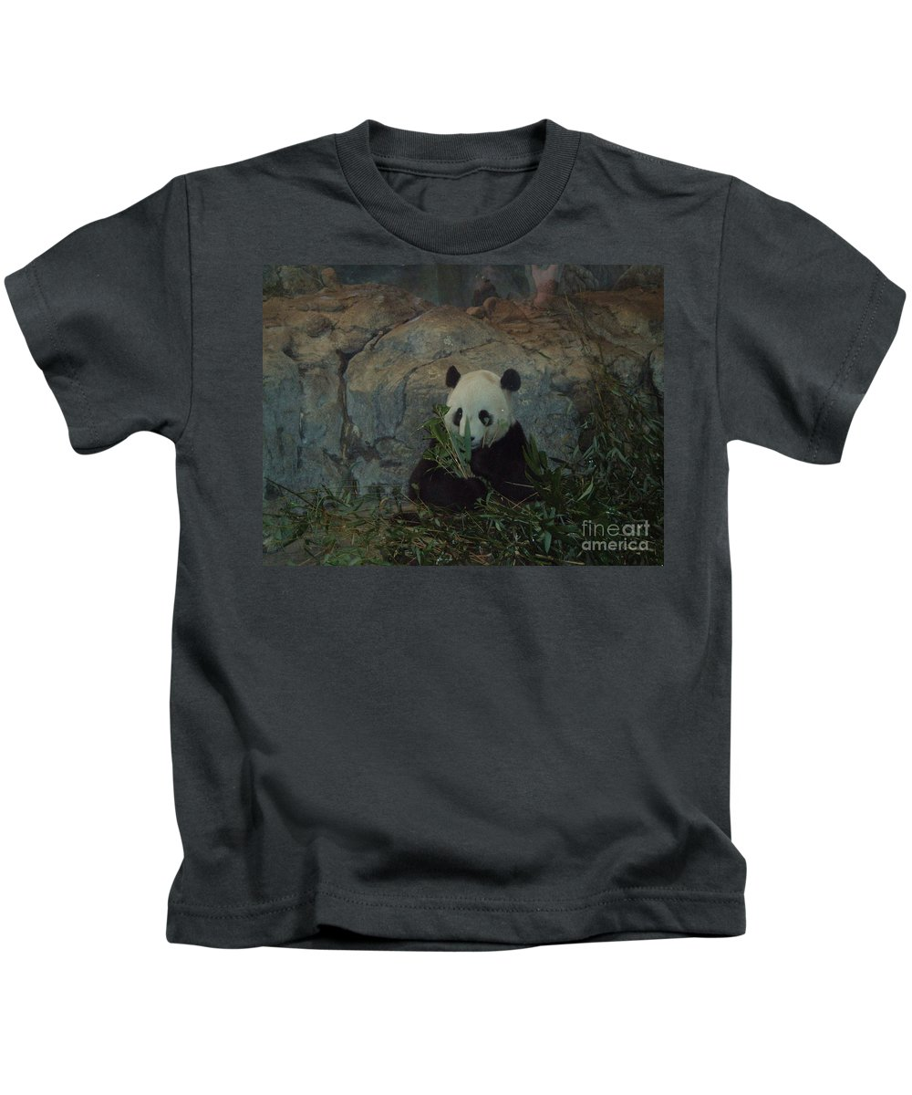 Panda Kids T-Shirt featuring the photograph Bamboo Thats For Dinner by Jost Houk