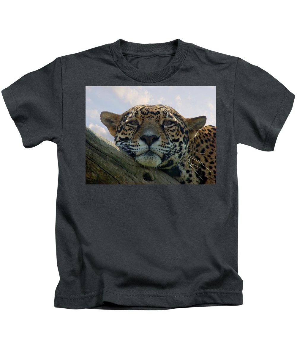 Jaguar Kids T-Shirt featuring the photograph Beautiful Jaguar by Sandy Keeton