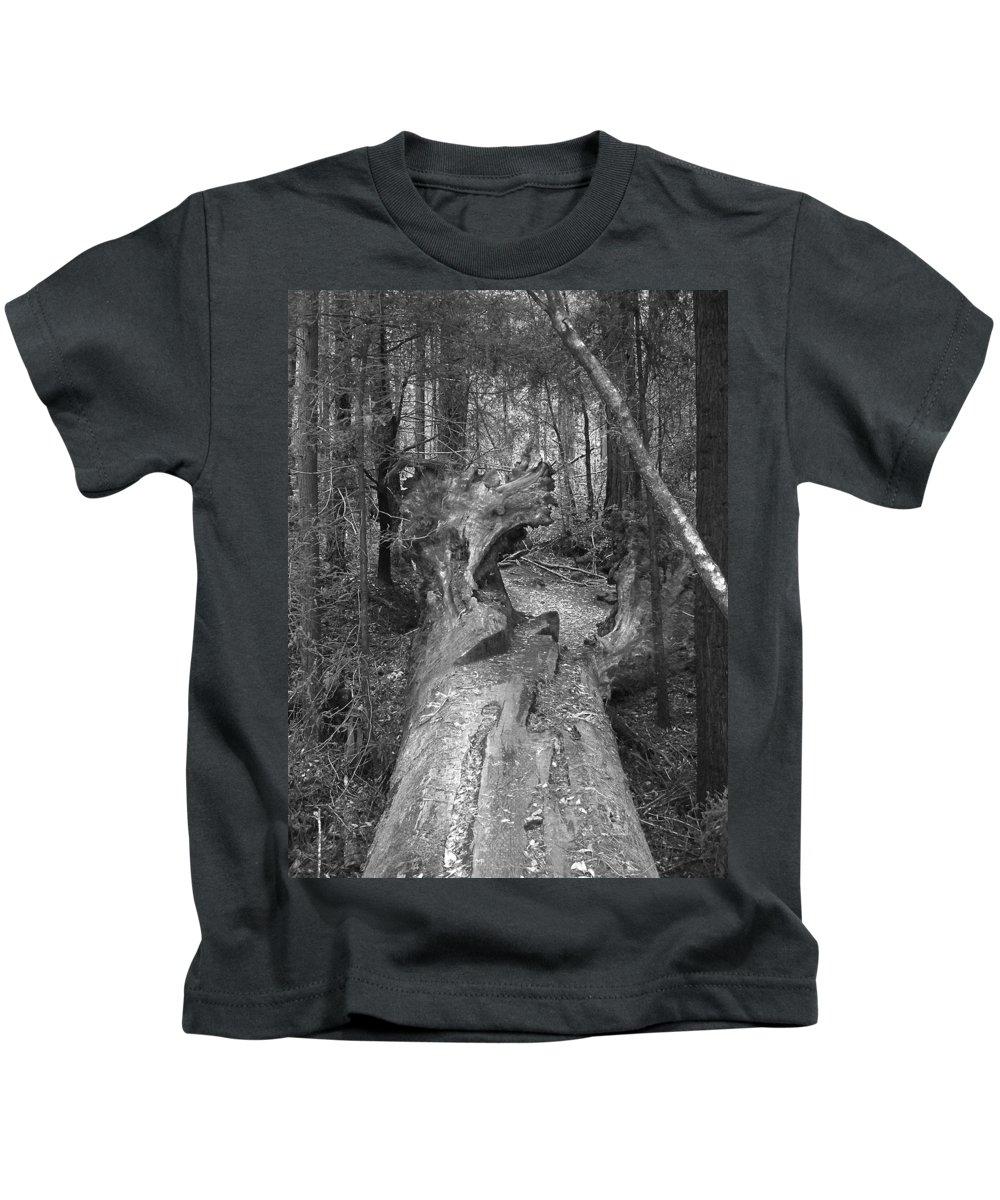 Landscape Kids T-Shirt featuring the photograph Big Basin 2 by Karen W Meyer