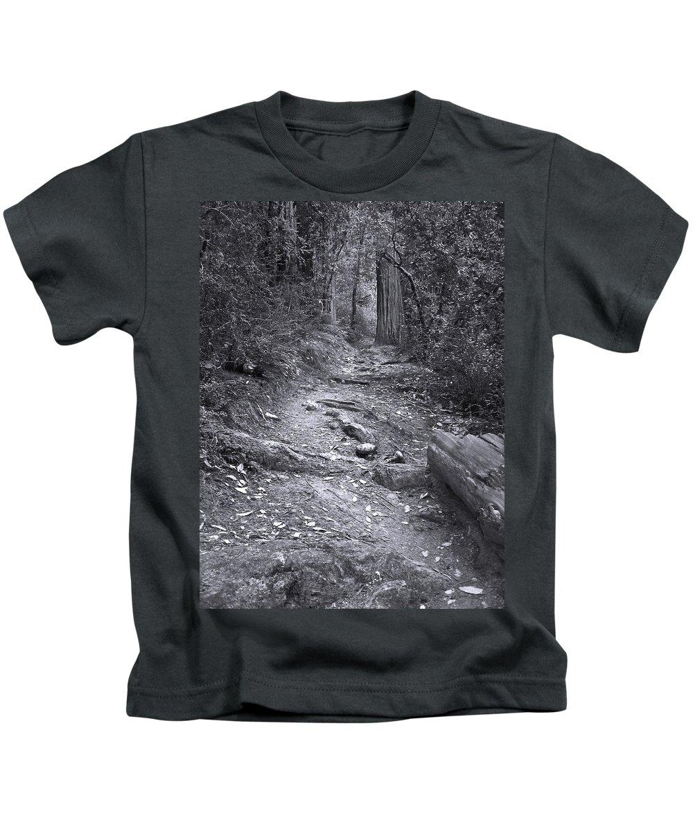 Landscape Kids T-Shirt featuring the photograph Big Basin Redwoods Sp 1 by Karen W Meyer