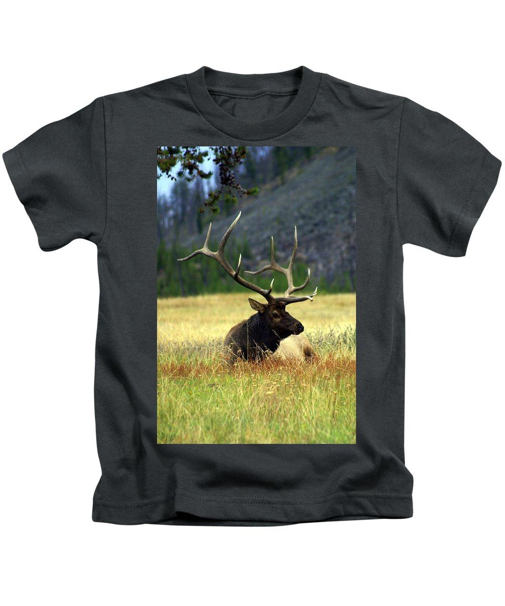 Kids T-Shirt featuring the photograph Big Bull 2 by Marty Koch