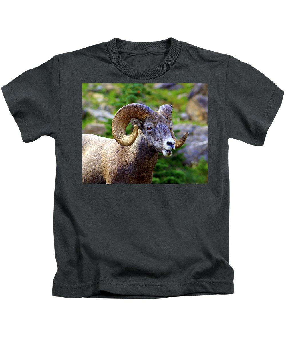 Big Horn Sheep Kids T-Shirt featuring the photograph Bighorn 2 by Marty Koch