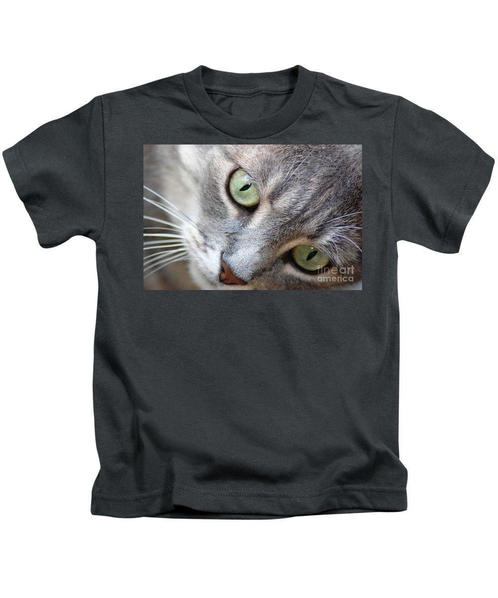 Cat Kids T-Shirt featuring the photograph Binkster by Donna Bentley