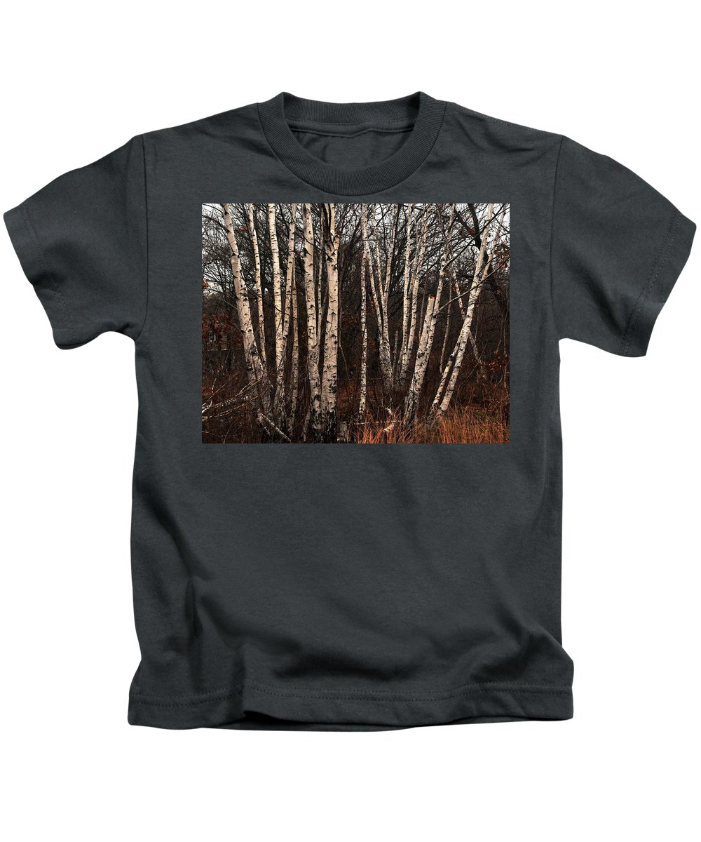 Birches In The Rain Rock Island Houghs Neck Quincy Ma Kids T-Shirt featuring the photograph Birches In The Rain by Bill Driscoll