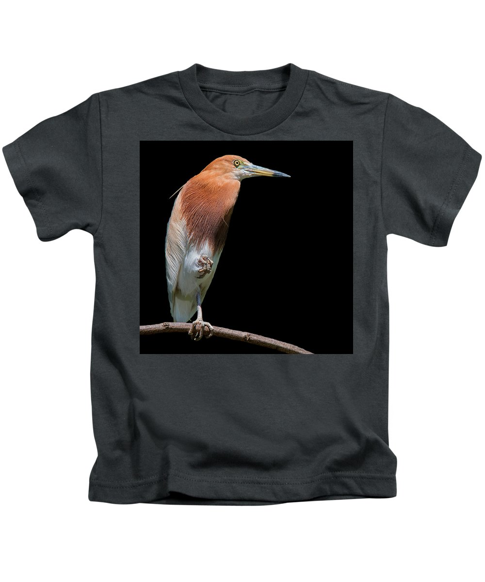 Kids T-Shirt featuring the photograph Bird On Black by Gabriel Jardim