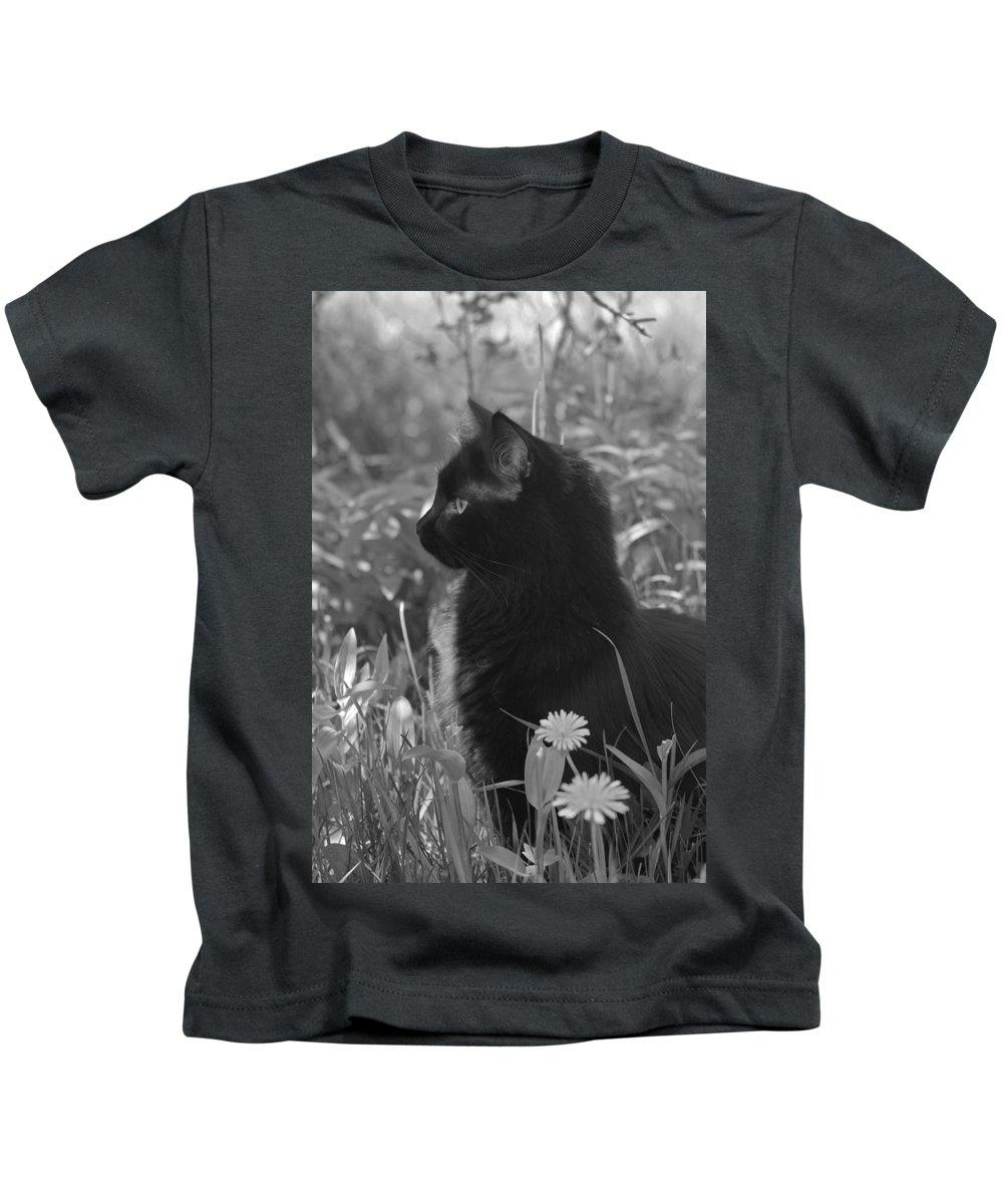 Cat Kids T-Shirt featuring the photograph Bird Watching by Karon Melillo DeVega