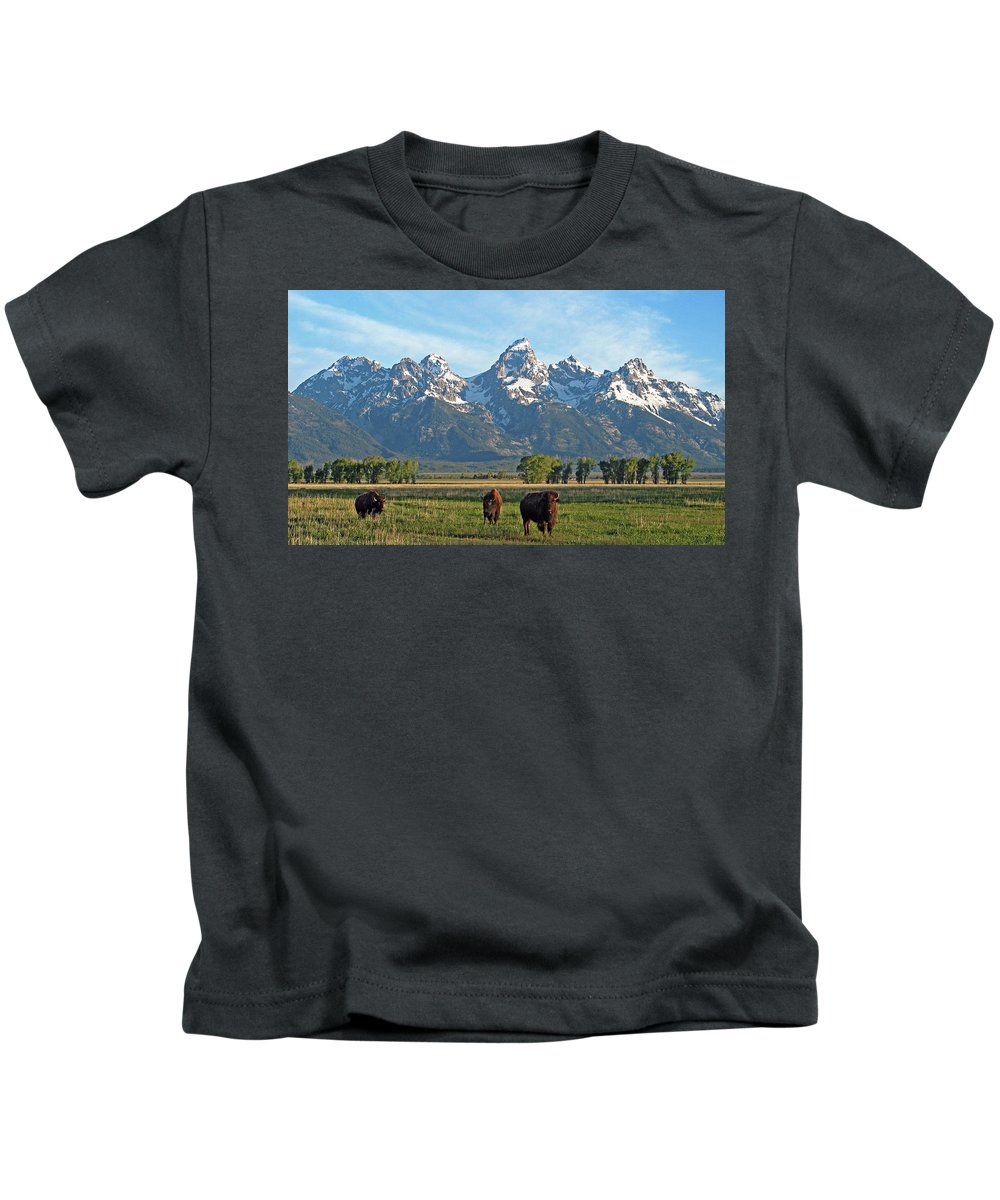 Bison Kids T-Shirt featuring the photograph Bison Range by Scott Mahon