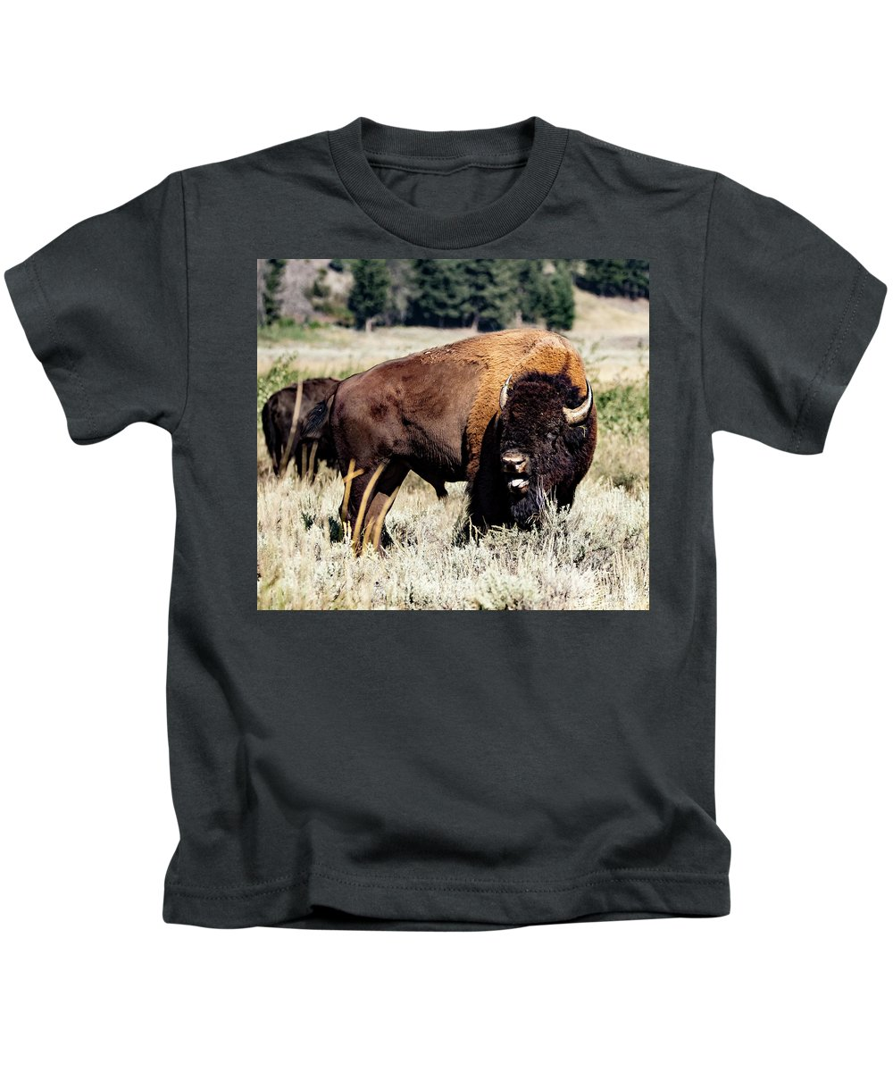 Kids T-Shirt featuring the photograph Bison by Sheryl Saxton