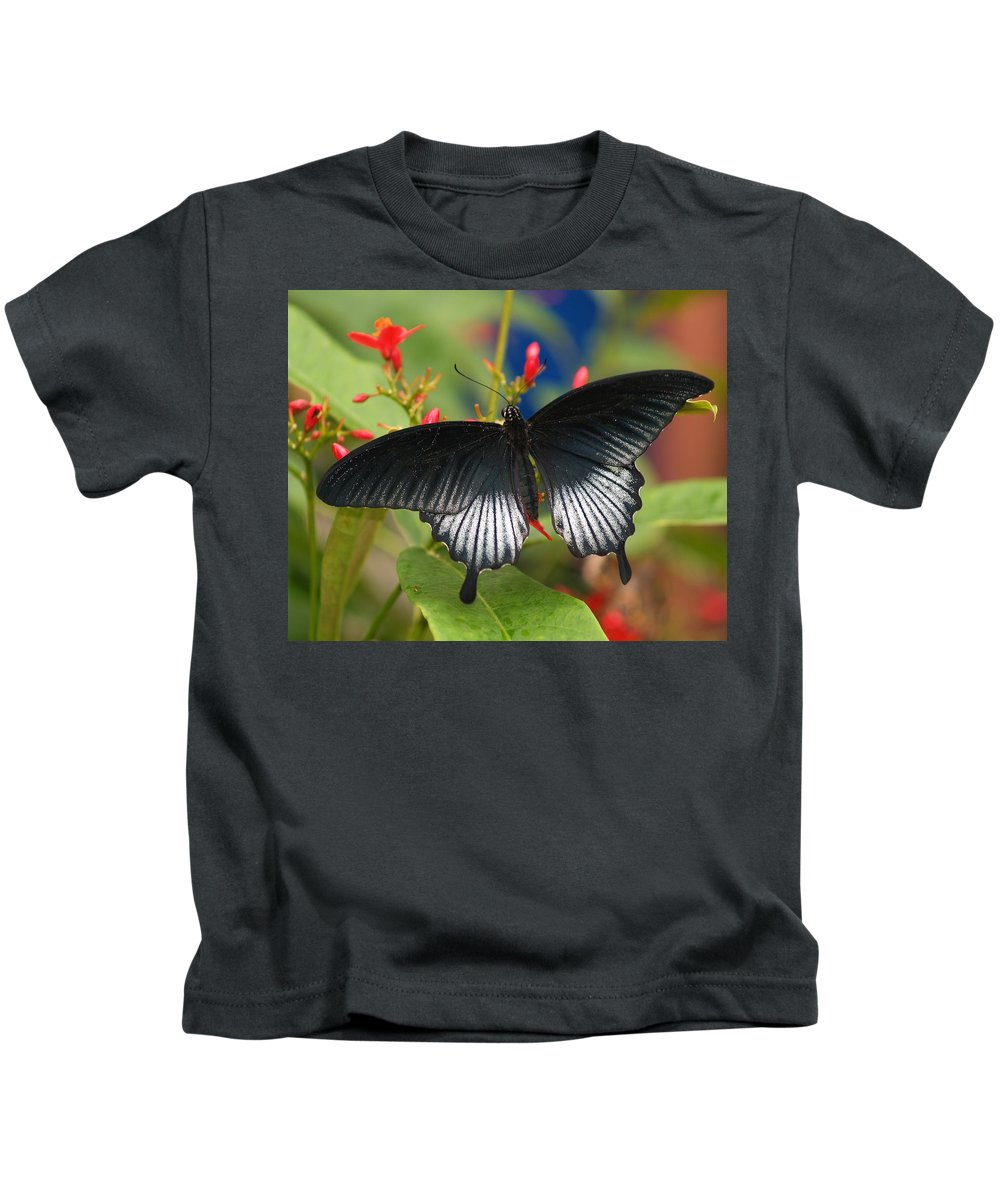 Butterfly Kids T-Shirt featuring the photograph Black Beauty by Gaby Swanson