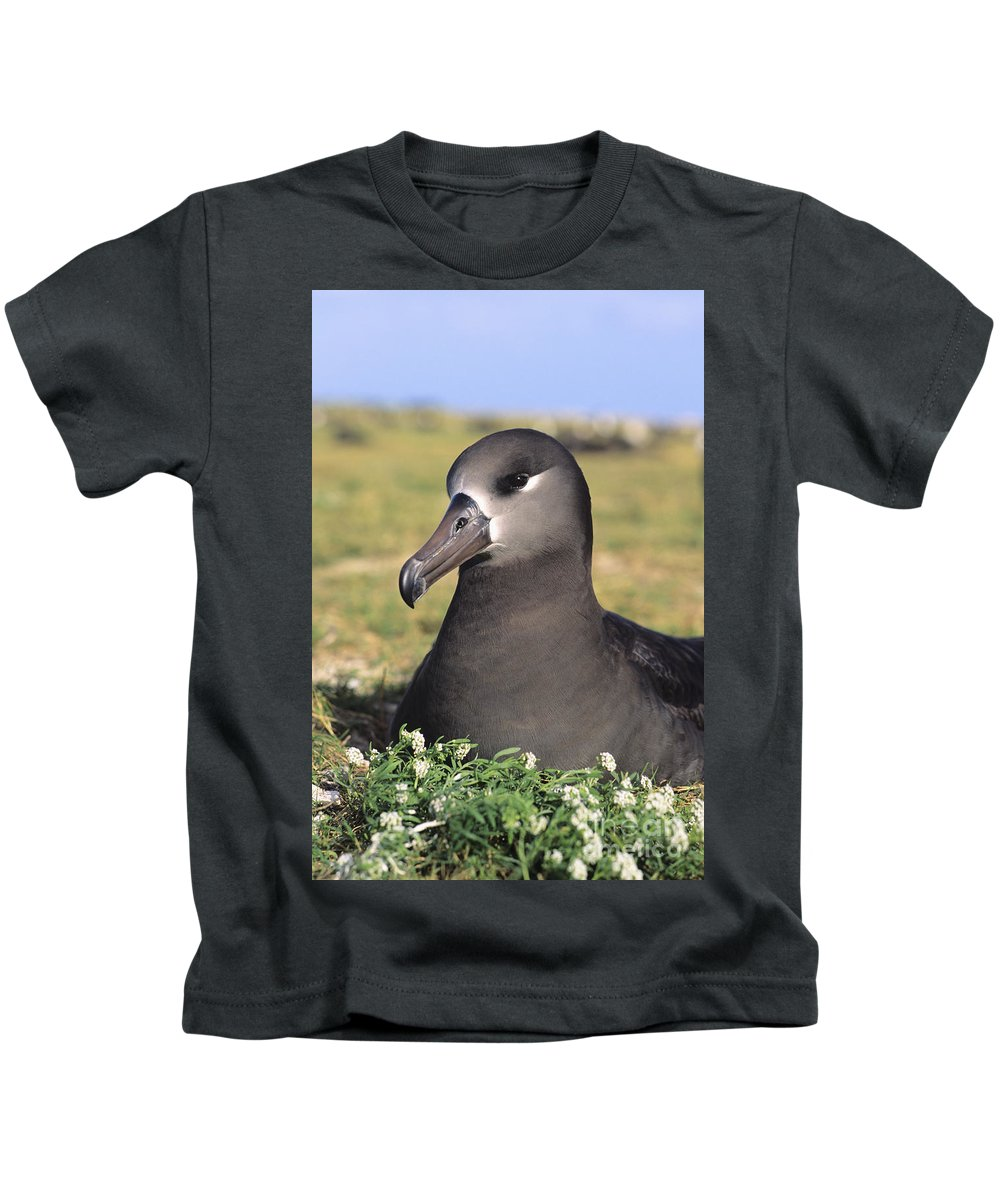 Albatross Kids T-Shirt featuring the photograph Black Footed Albatross by Reggie David - Printscapes